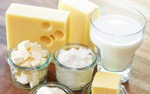 lácteos en las dietas